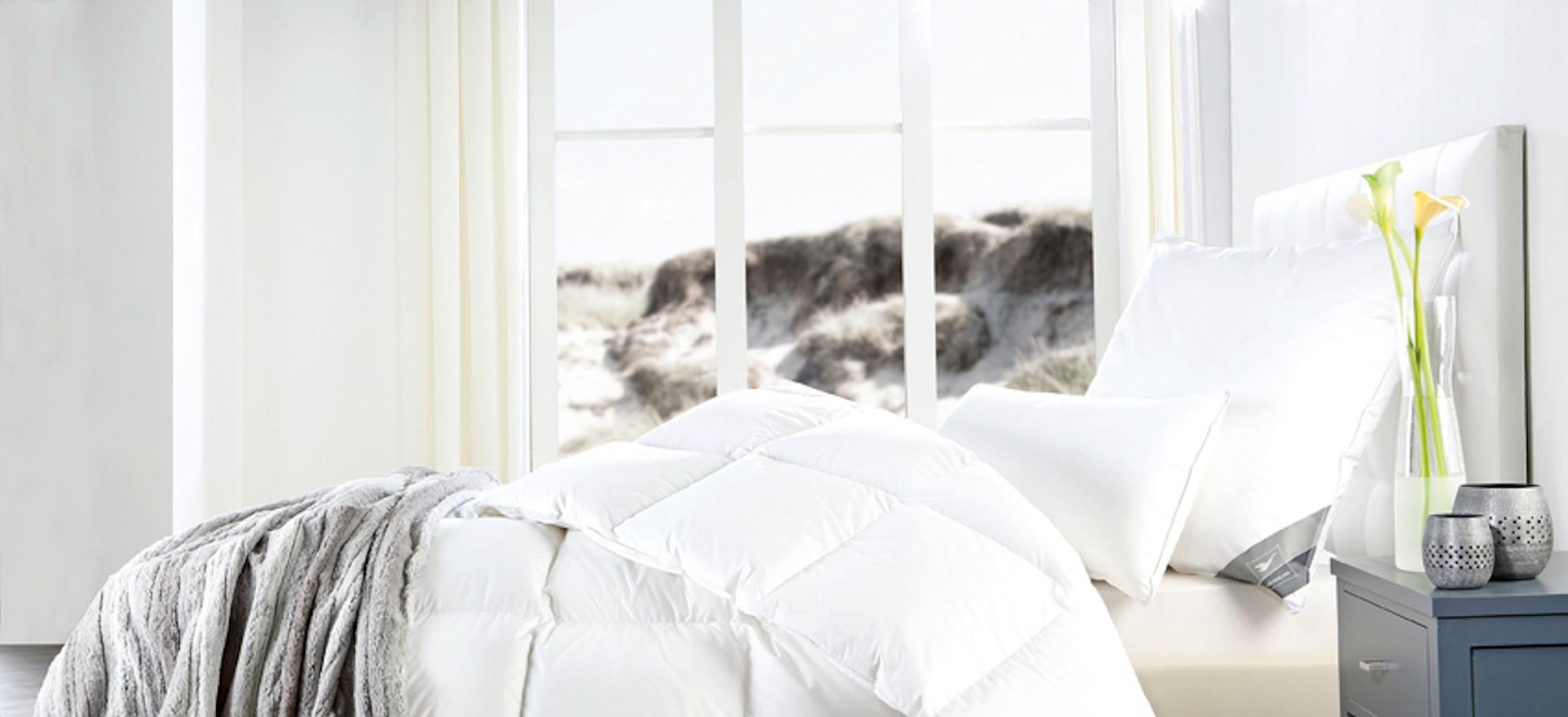 Duvet und Kissen zu TOP Preisen